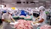 Thủy sản gặp khó, VASEP kêu dừng tăng lương