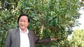 Tương lai cây macca ở Lâm Đồng