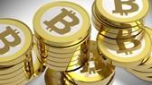 Sàn giao dịch bitcoin Mt. Gox bên bờ vực thẳm?