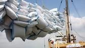 2011: Dự báo xuất khẩu gạo đạt 7,5 triệu tấn