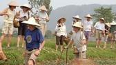 Vietnam ranks best for homestays