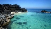 Quang Ngai province to establish sea reserve