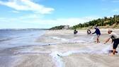 Rộn ràng mùa ruốc biển