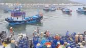 Đóng cửa cảng cá Vĩnh Trường vì không an toàn