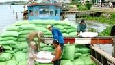 Gian nan cạnh tranh xuất khẩu gạo