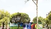 HCMC should auction golden land plots: expert
