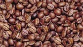Coffee Forecast to Bring Home $1 billion in 2006/07 Crop