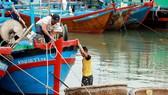 漁民繫緊船隻以防颱風。