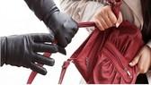 Bắt 2 đối tượng trộm, cướp giật tài sản giữa ban ngày