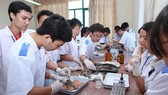Students at the Hai Phong University of Medicine and Pharmacy A new training program will place more emphasis on practice. – VNA/VNS Photo Quy Trung