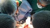 Cho Ray Hospital receives recording certifications in organ transplant