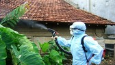 Upward trend in number of dengue cases in southern Vietnam