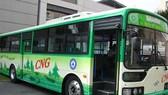 Việc đầu tư xe buýt sử dụng khí nén thiên nhiên, nâng cao chất lượng phục vụ đã thu hút hành khách đi xe buýt.