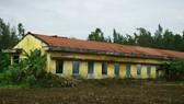 Quảng Ngãi: Khu tái định cư 11 tỷ đồng bỏ hoang 20 năm