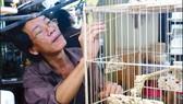 Lồng chim xứ Huế