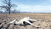 Thảm họa biến đổi khí hậu (K2): Xáo trộn xã hội