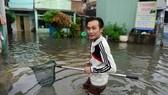 TPHCM: Ra đường bắt cá sau trận mưa lớn suốt đêm