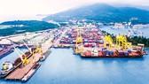 CP cảng vẫn kỳ vọng TPP