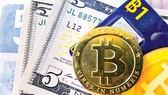 Bất chấp rủi ro lao vào cơn sốt Bitcoin
