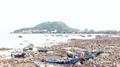 Dự án bến du thuyền tỷ USD tại Vũng Tàu