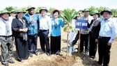 Chủ tịch Quốc hội Nguyễn Thị Kim Ngân cùng các đại biểu tại công viên Rừng Sác, Cần Giờ. Ảnh: HỒ LONG