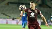Milan đang nỗ lực thương thảo mua Andrea Belotti (Torino).