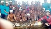 Cá sấu nặng 1 tấn