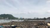 """Tập đoàn Tuần Châu đề xuất xây dựng dự án bất động sản nghỉ dưỡng """"khủng"""" tại Vũng Tàu"""