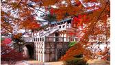 Thành phố Daegu và tỉnh Gyeongbuk quảng bá du lịch tại TPHCM