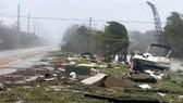 Hỗ trợ nhân dân Cuba khắc phục hậu quả sau bão Irma