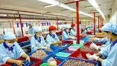 Lấy doanh nghiệp làm động lực phát triển kinh tế lâm nghiệp