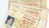 TPHCM phát hiện hơn 1.264 giấy phép lái xe giả