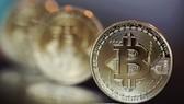 """Tiền ảo Bitcoin đang ngày một phát triển, tạo làn sóng """"đào tiền"""" ở nhiều quốc gia trên thế giới"""