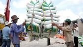 Gạo hữu cơ, gạo đặc sản xuất khẩu không cần điều kiện?