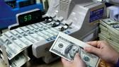 Tỷ giá ngày 20/10: Giá USD biến động nhẹ