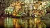 Địa phương đầu tiên ở Việt Nam cho thuê môi trường rừng