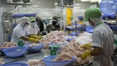 Cánh cửa thị trường Mỹ vẫn mở với cá tra Việt Nam