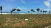 Lập đoàn kiểm tra vi phạm đất đai, chặt phá, lấn chiếm rừng Phú Quốc