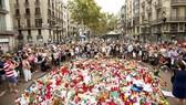 Nạn nhân cuộc tấn công khủng bố Barcelona đến từ khắp nơi trên thế giới