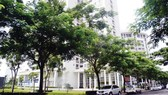 Mảng xanh của công trình nhà ở giúp giảm khí thải nhà kính, tạo không khí trong lành cho cư dân. Ảnh: HUY ANH