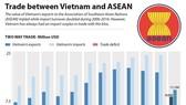 AEC a catalyst for reform in Vietnam