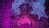 """Lễ hội """"sắc màu năm châu"""" dịp lễ 30-4, 1-5 tại công viên văn hóa Đầm Sen"""