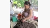 Độc đáo chợ địa long mùa nước nổi