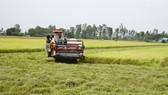ĐBSCL là vùng sản xuất nông nghiệp trọng điểm, nên nhu cầu sử dụng máy móc rất lớn