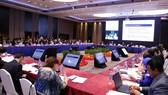 圖為2017年APEC SOM3會議全景。(圖源:互聯網)