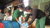 動物產品浸泡化學劑的行徑將被罰款2000萬至2500萬元。