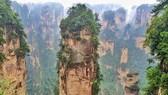 《阿凡達》電影中150米高造型奇特的乾坤柱。(圖源:互聯網)