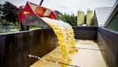 Từ vụ châu Âu rúng động vì trứng bẩn: Bạn có đang ăn thuốc trừ sâu mỗi ngày?