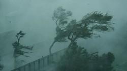 Bão xuống quá sâu, miền Nam rung rinh trước bão