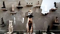 Ai Cập phát hiện thêm nhiều mộ cổ